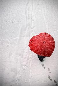 inverno camminando sotto la neve